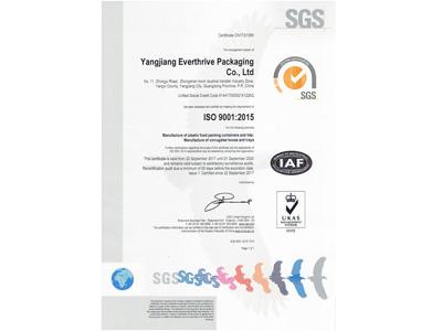 恒茂ISO证书(英文)